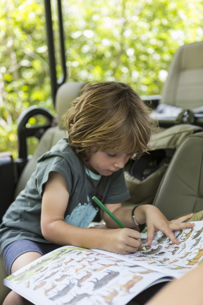 five year old boy drawing moremi