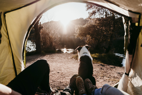 couple with dog camping at lakeside