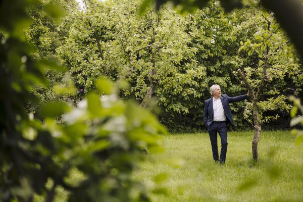 senior businessman standing at a tree