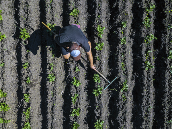 aerial view of man working on