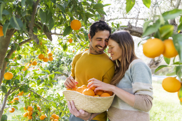 romantic couple carrying oranges in wicker