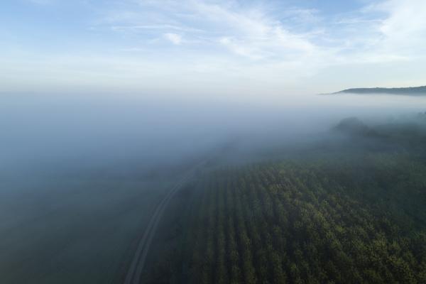 germany bavaria drone view