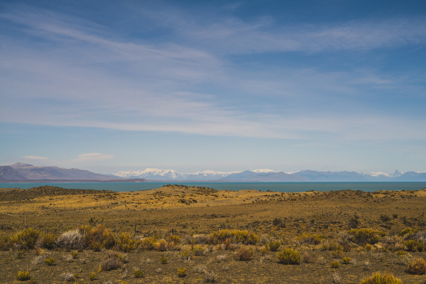 argentina bushy plateau with lake
