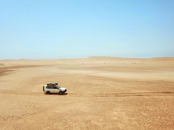mauritania banc darguin national park