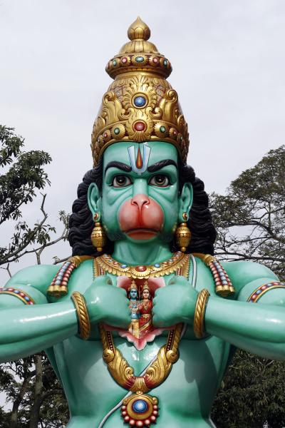 the hindu god hanuman monkey god