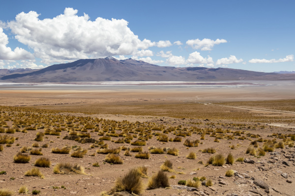 laguna colorada eduardo avaroa national park