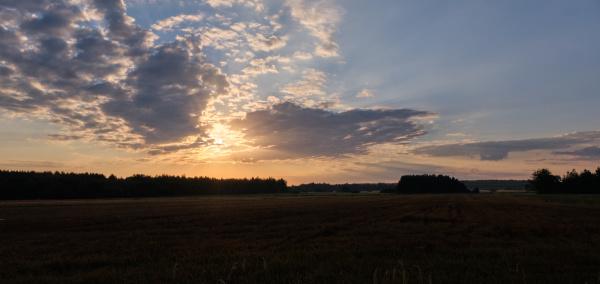 summertime sunrise in agricultural landscape