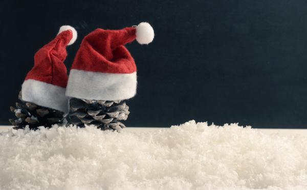 pine cones with hat of santa