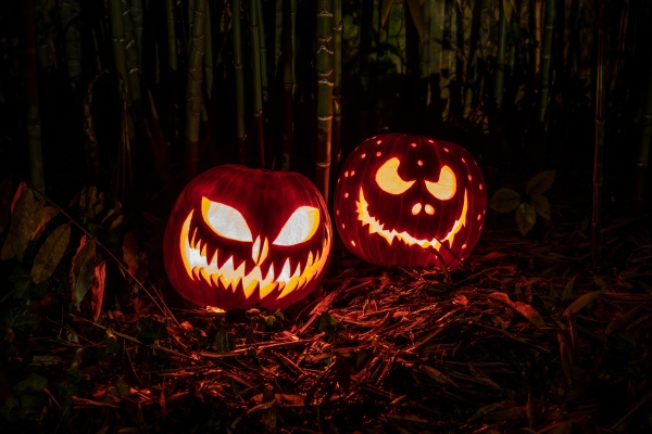 halloween pumpkins lanterns with scary expression