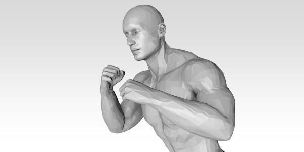 fighting technique