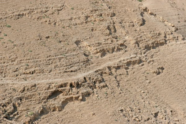 view on judea desert israel