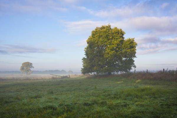 rural idyllic landscape in germany