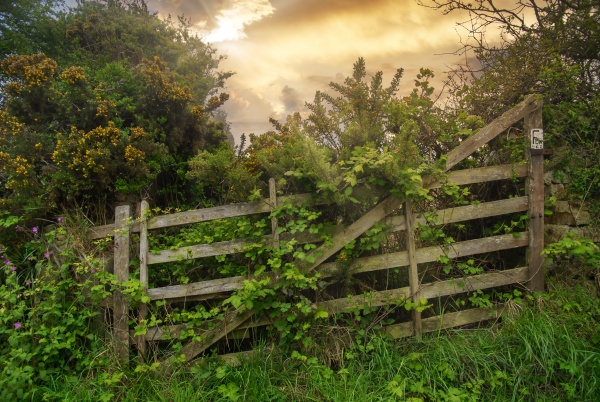 old wooden barrier in the countryside