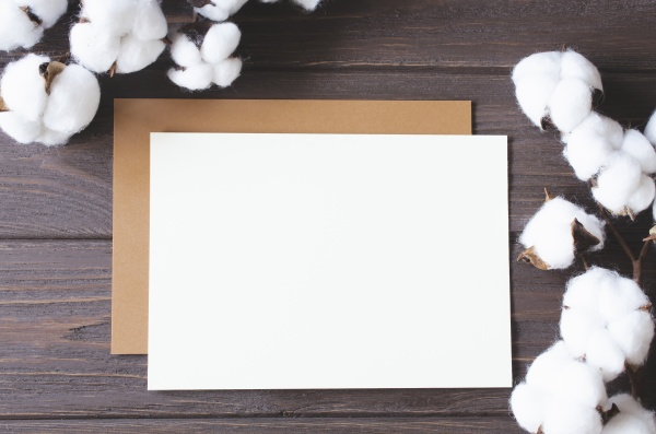 mockup card with cotton flowers template