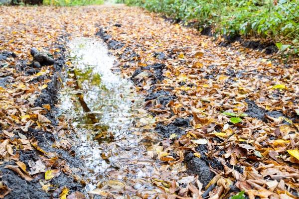 rain puddle in deep rut on