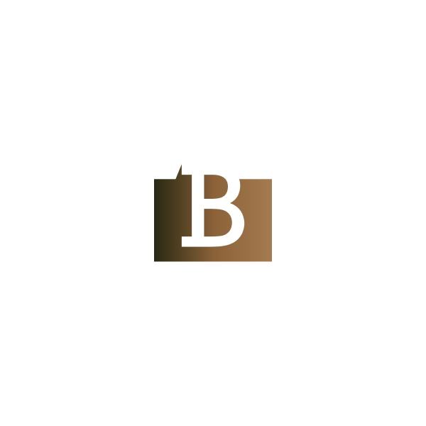letter b on the square icon