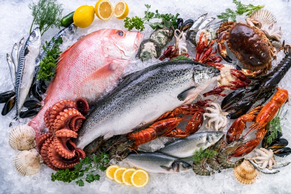 fresh seafood on ice background