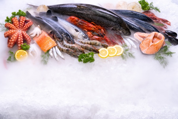 top view fresh seafood on ice