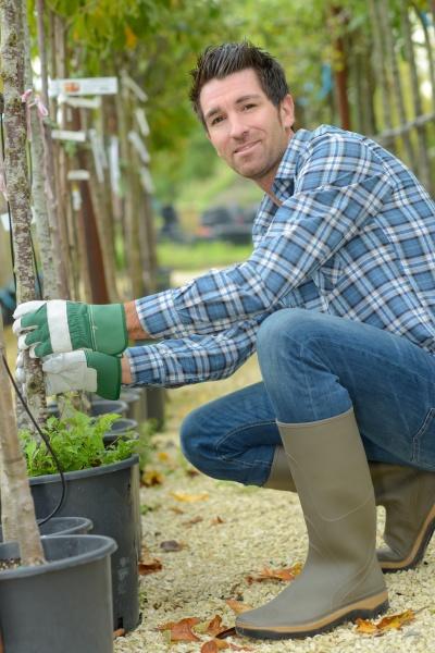 portrait of gardener tending trees