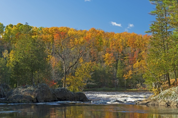 north woods river rushing to the