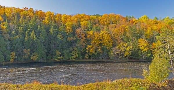 colors of the north woods in