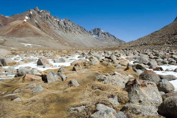mountains of himalayas young beautiful