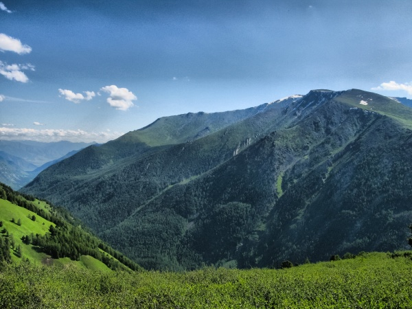 nature is altai mountain landscape forests