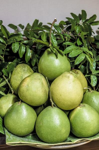 pomelo fruit on a pile