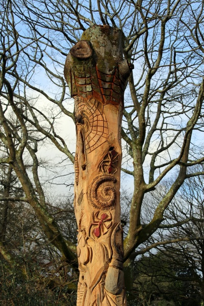 insects carved into a tree trunk