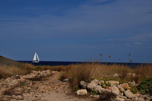 mediterranean sea at the coast of
