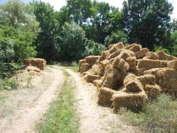 bales of hay lie on side