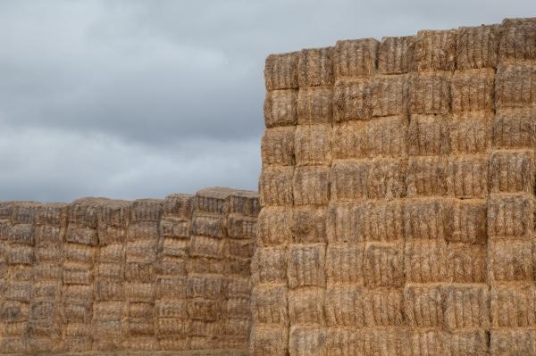 piles of stacked rectangular straw bales