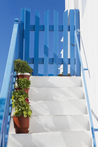potted plants on a staircase mykonos