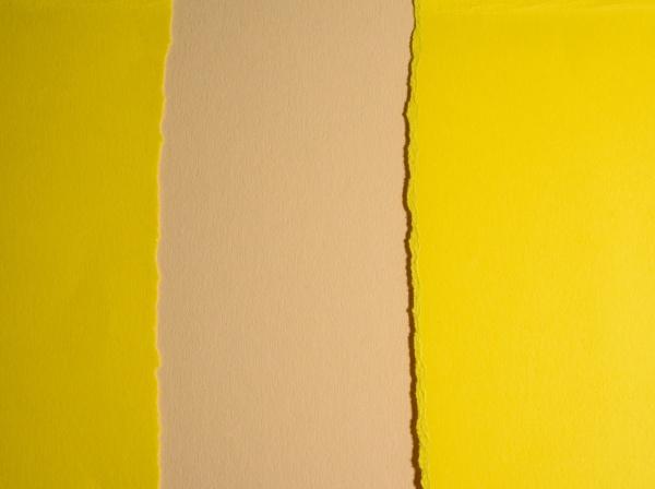 torn edges of yellow cardboard on