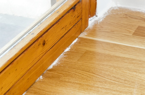insect powder on parquet