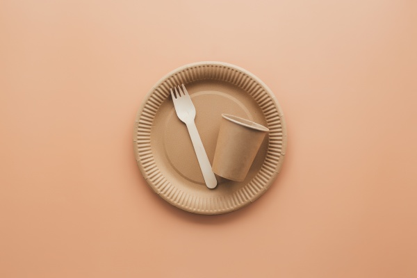 eco friendly kraft paper fork cup
