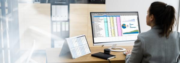 woman using finance spreadsheet report