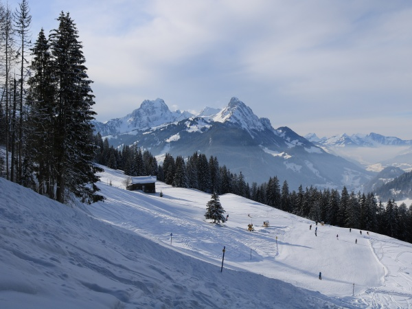 ski slope in the horneggli ski