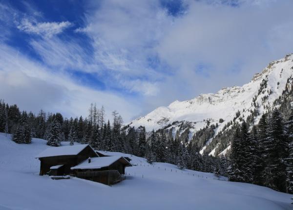 winter scene in tuxberg bernese