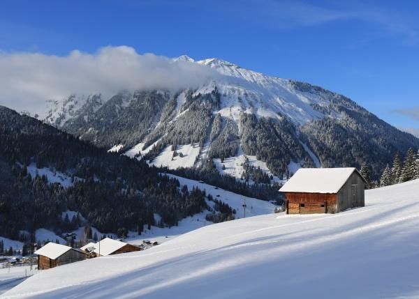 wintery, landscape, in, the, saanenland, valley, - 29673586