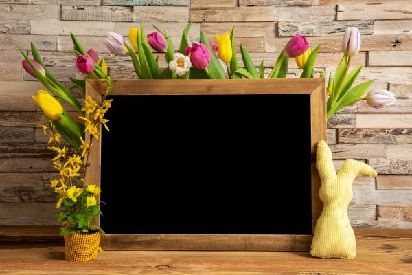 tulip flowers bunny brick wall blackboard