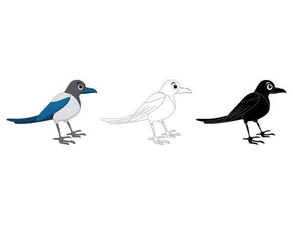 magpie bird cartoon illustration set