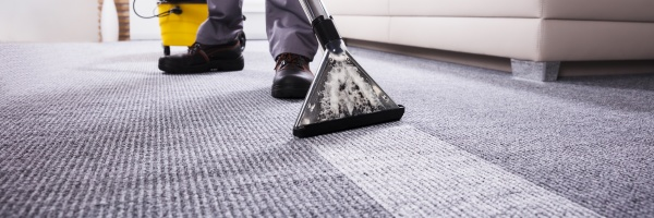 person, cleaning, carpet, with, vacuum, cleaner - 29699078