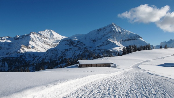 wildhorn and spitzhorn in winter mountains
