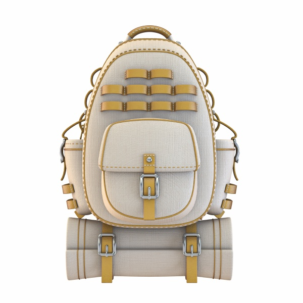 canvas and leather backpack front view