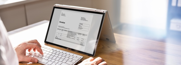 accountant using online invoice for budget