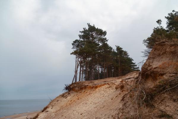 baltic sea coast in cloudy weather