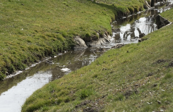 stream of a meandering brook or