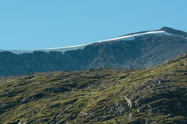 berge mit schneefeldern im dovrefjell
