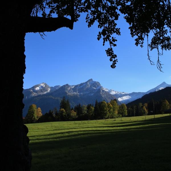 idyllic landscape in the swiss alps
